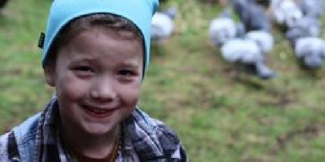 Kisah Nyata, Bocah ini Sering Diberi Hadiah Oleh Burung Gagak