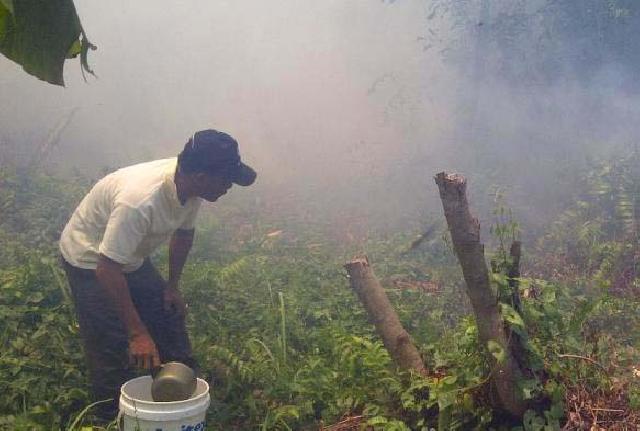 Dua Hektar Lahan Warga Terbakar