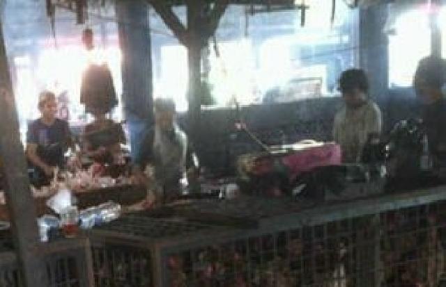 Harga Ayam Potong Di Kabupaten Pelalawan Mulai Naik