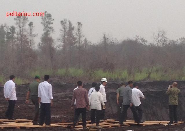 Akhirnya Jokowi Datang ke Riau, Lihat Bekas Karlahut di Rimbo Panjang