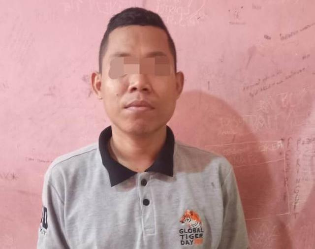 Polisi Tangkap Ismanto Oknum ASN KLHK Pada Balai TNBT Inhu, Tersangka Jadi 11 Orang