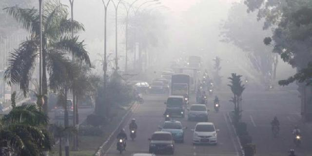 Terkait Kebakaran Hutan, 4 Perusahaan Kena Sanksi Kementerian LHK