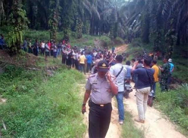 PT Tasma Puja Serobot Lahan Masyarakat, DPRD Inhu Dalam Pengaduan Masyarakat Desa Alim