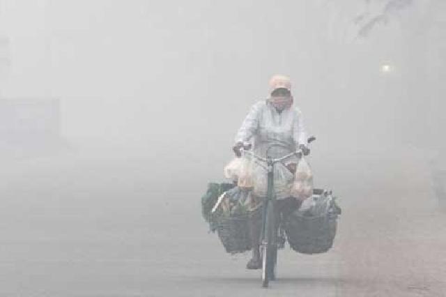 Riau dan Lima Provinsi Lainnya di Indonesia Siaga Darurat Asap