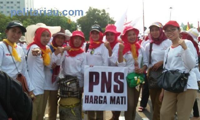 MenPAN-RB Janji Angkat PTT Jadi PNS 2016, Ini Kata Forum Bidan PTT Inhu