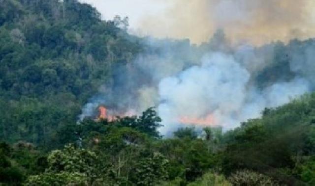 Pemkab Bengkalis Targetkan 2015, Tidak Terjadi Bencana Karhutla