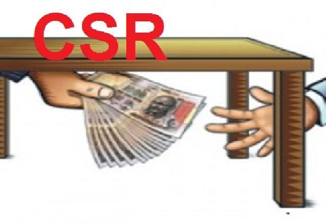 Rp 140 Juta Perbulan CSR Perkebunan Akasia PT CSS Terancam Dilaporkan