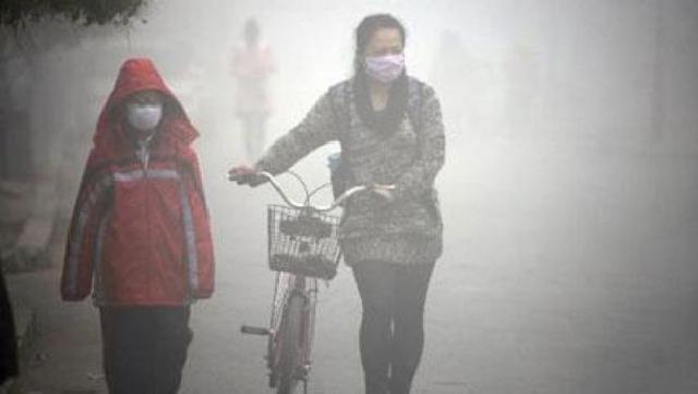 Mendikbud: Selama Dilanda Kabut Asap, Pendidikan Bukan Prioritas