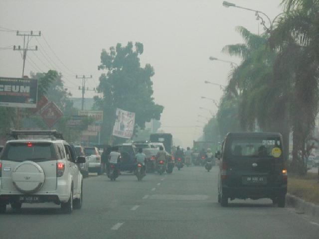 Pangkalan Kerinci Di Selimuti Kabut Asap
