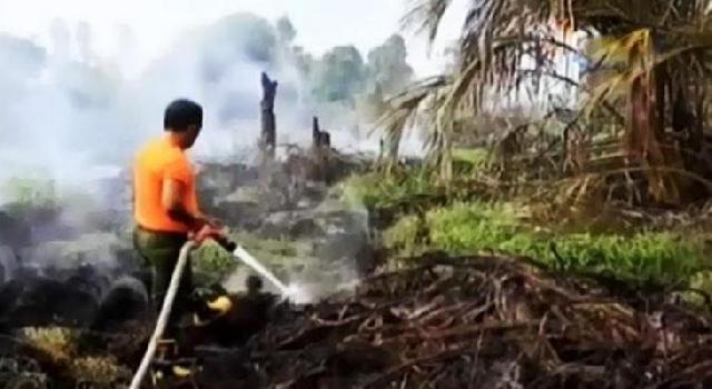 Lagi Lahan Terbakar, Kualitas Udara Dumai Semakin Memburuk