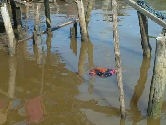 Heboh, Mayat Perempuan Ditemukan Mengapung di Perairan Sungai Laut, Tanah Merah