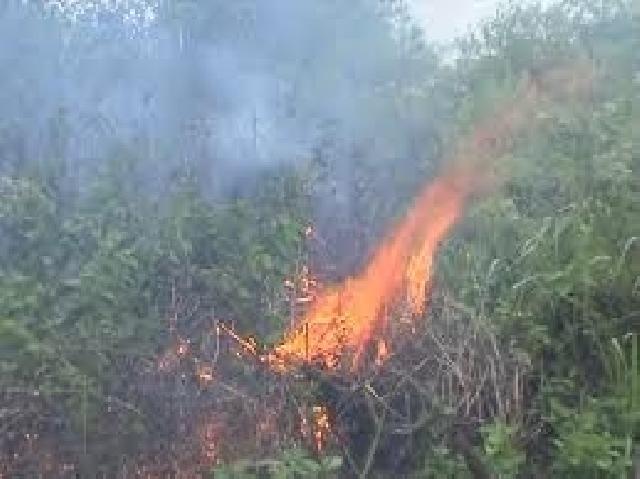 Dua Tersangka  Pelaku Pembakar Lahan di Tangkap Polres Kampar