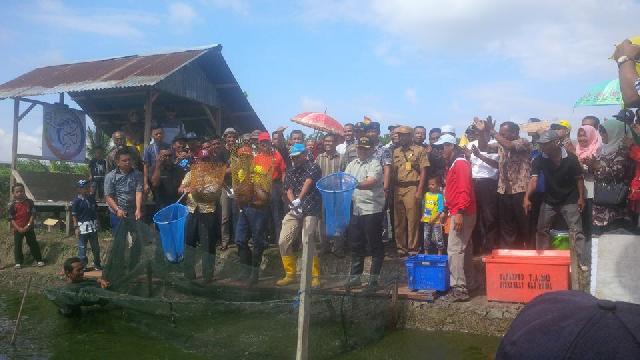 Bupati Suyatno Panen 20 Ton Ikan Patin
