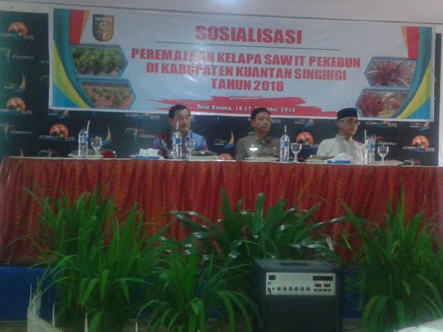 Wabup Kuansing H Halim Buka Sosialisasi Peremajaan Kelapa Sawit