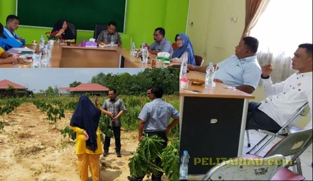Gawat Soal Ketahanan Pangan, Temuan Sidak Komisi II DPRD Inhu Mengejutkan