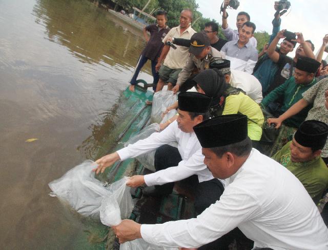 Syamsuar Tabur Benih Ikan Patin di Sungai Siak