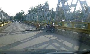 http://pelitariau.com/assets/berita/thumb/kecil-79319398803-jembatan_lubuk_jambi.jpg